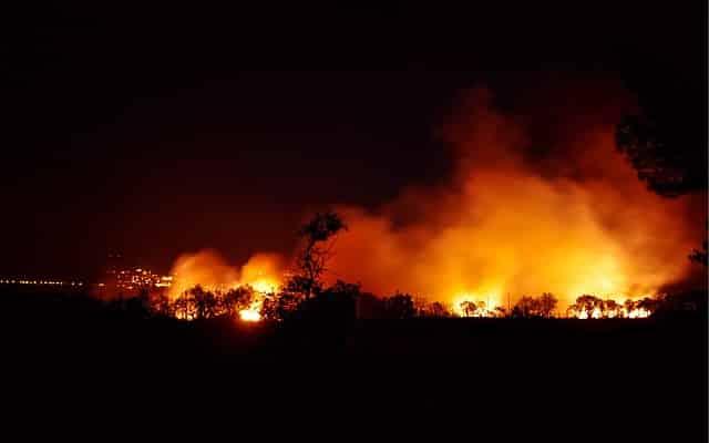 Incendio forestal. Emisiones de efecto invernadero en Estados Unidos en su nivel más bajo en tres décadas