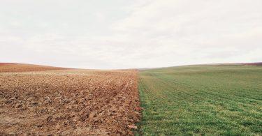El sistema alimentario mundial podría destruir los hábitats naturales en todo el mundo