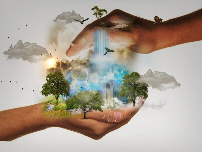 WWF predice los principales problemas para 2021 [tendencias y herramientas]