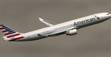 Avión. American Airlines no permitirá más animales de compañía