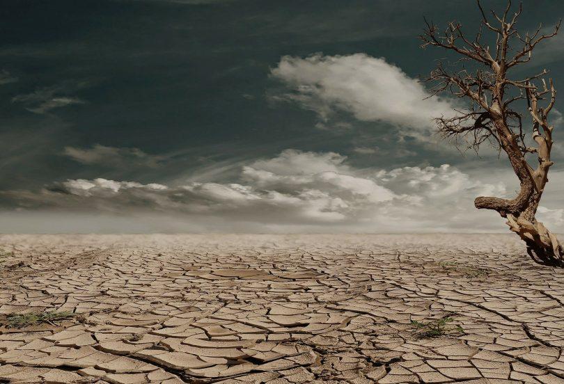 Así es como el Príncipe Carlos quiere llevar agua a 50 millones de personas