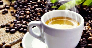 sello de la rana en tu café