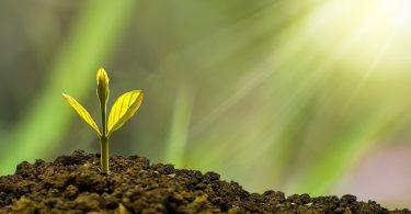 Crece la demanda por ASG para inversiones