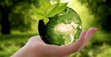 Mundo. Tendencias en empaques sostenibles a considerar ya