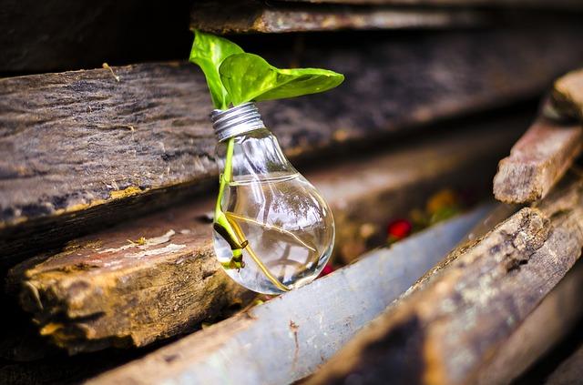 Sustentabilidad y Gen Z