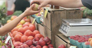 comer de forma sustentable