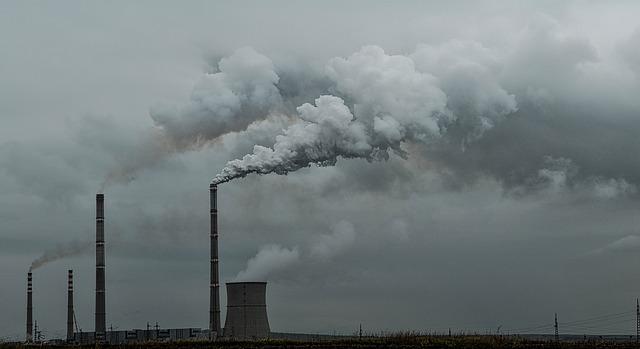 formas económicas de reducir la huella de carbono
