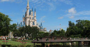 250 lagartos removidos de Walt Disney World desde 2016, cuando atacaron a un niño