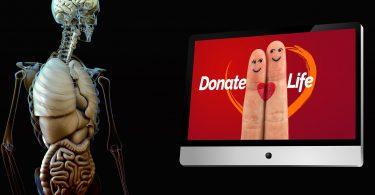 Campaña de donación de órganos: ¿darías tu hígado a un extraño?