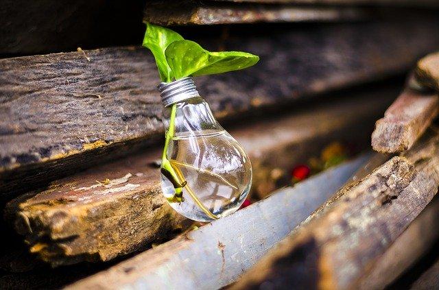 Emprendedores en sustentabilidad