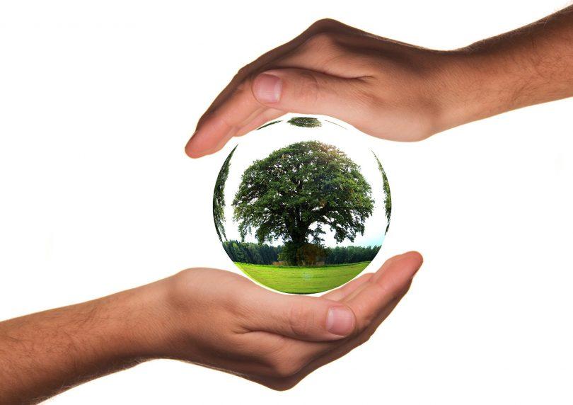 Fondo para la Naturaleza de Unilever anuncia su primer proyecto