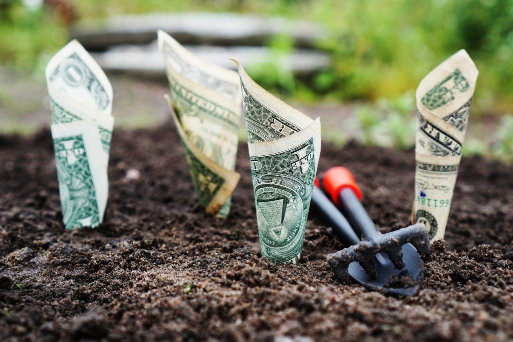 greenwash en el sector financiero
