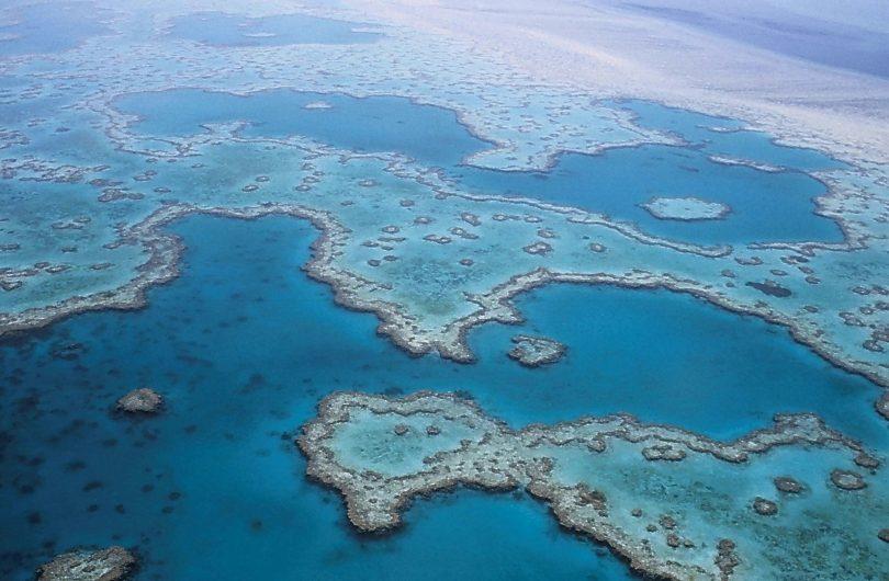 ¿Se nos muere la Gran Barrera de Coral? UNESCO