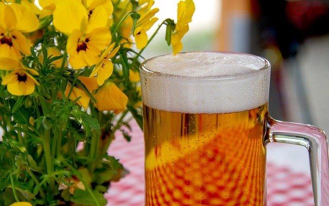 acciones sustentables de una cervecera