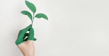 es ESG, greenwash