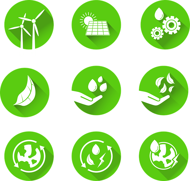 4 formas de atraer a los mejores talentos en sustentabilidad