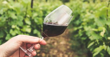 vino sustentable