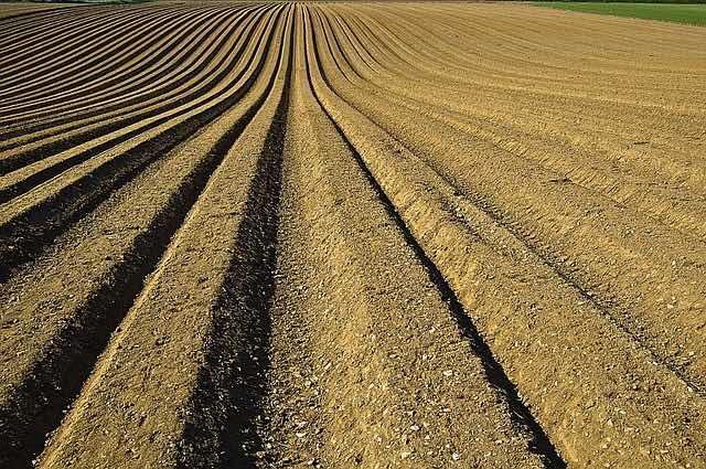 agricultura y suelos