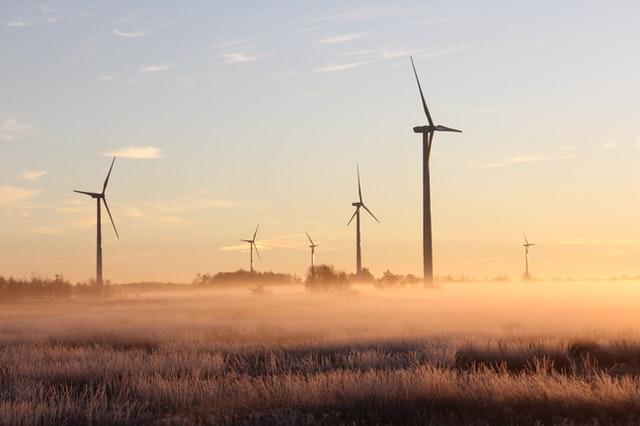 impacto ambiental de la energía eólica en el mundo