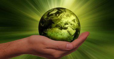 Trabajo regenerativo, ¿Qué es y por qué importa?