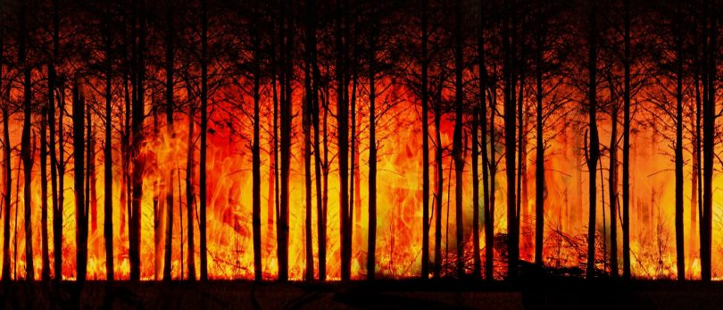 4 formas del impacto del calor en la economía