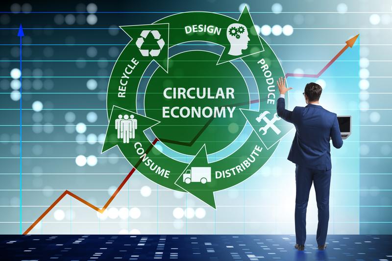 Economía circular en mi empresa [4 pasos para lograrla]