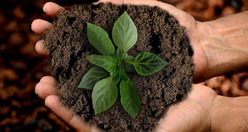 sostenibilidad grupo modelo