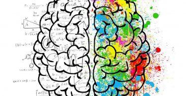 Psicología impulsando sustentabilidad