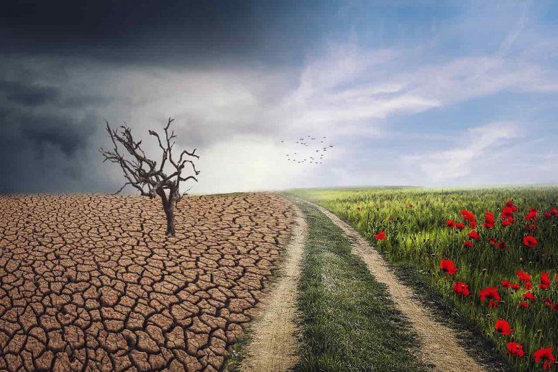 reporte IPCC