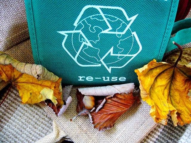características de una escuela sustentable, bienes de consumo