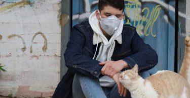 apoyos ante pandemia