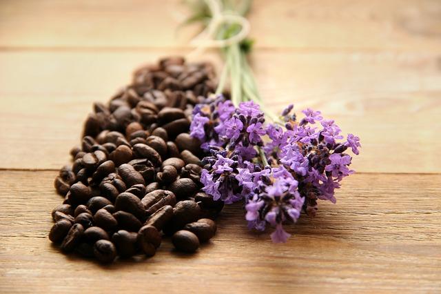 remedios alternativos a la medicina