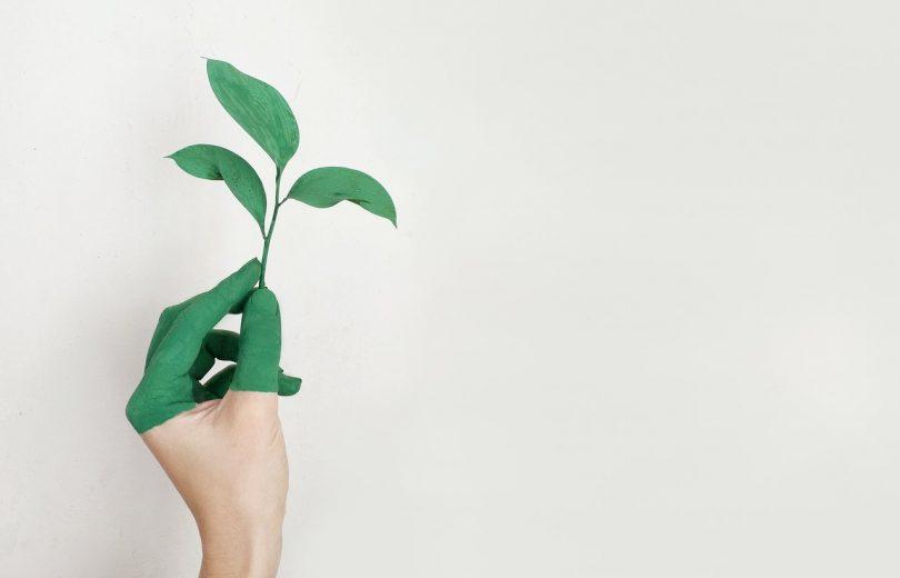 empresas líderes en sustentabilidad 2021