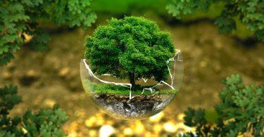ESG vs greenwashing: 5 formas de diferenciarlos