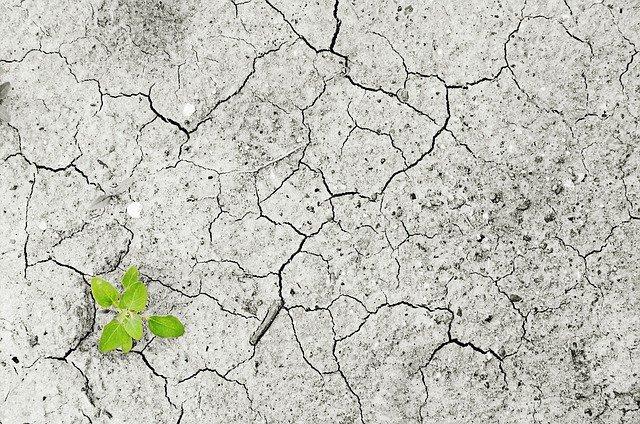 estas son 5 claves del Informe del IPCC