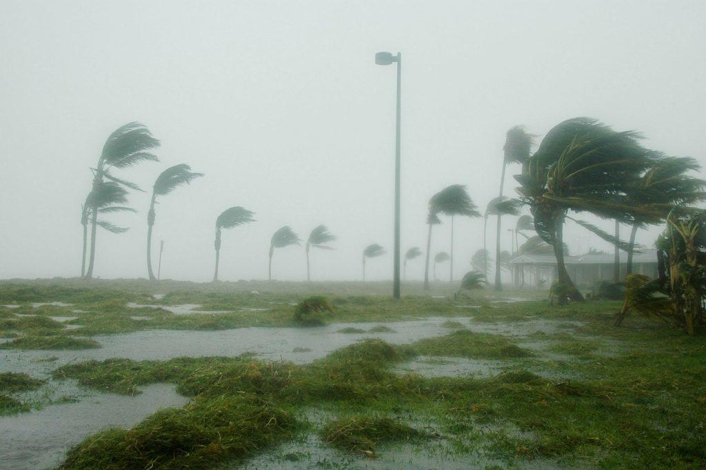 Cambio climático aumenta peligrosidad de huracanes