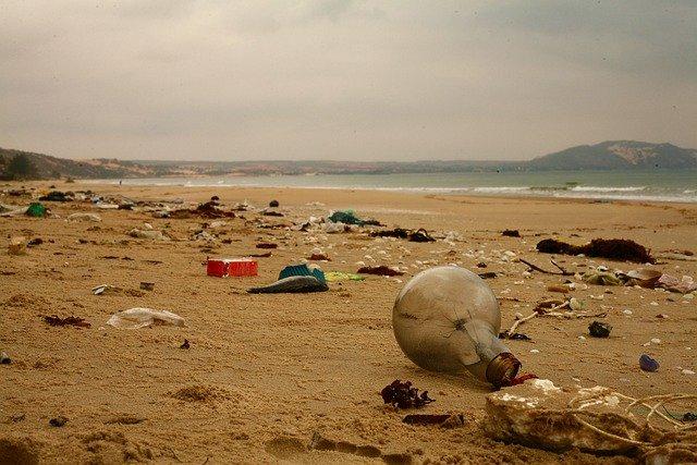 https://www.expoknews.com/costo-de-la-contaminacion-por-plastico/