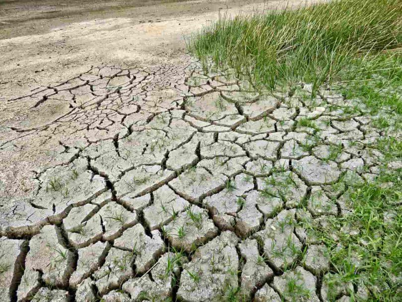 desastres climáticos sequias