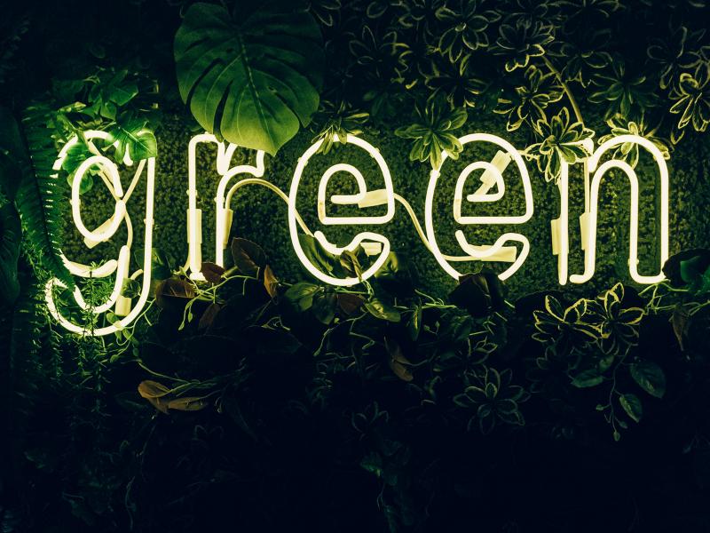 ejemplos de greenwashing