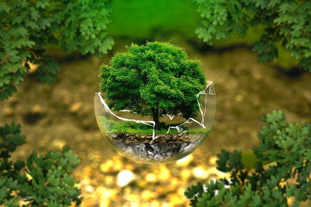 es la economía verde la solución